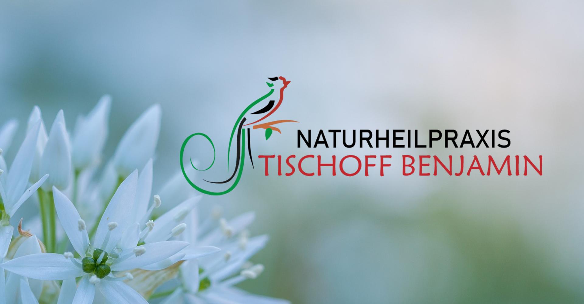 Heilpraktiker Logo, Naturheilpraxis Logo, Sanoquetzal, Quetzal, Logo Naturheilpraxis Benjamin Tischoff